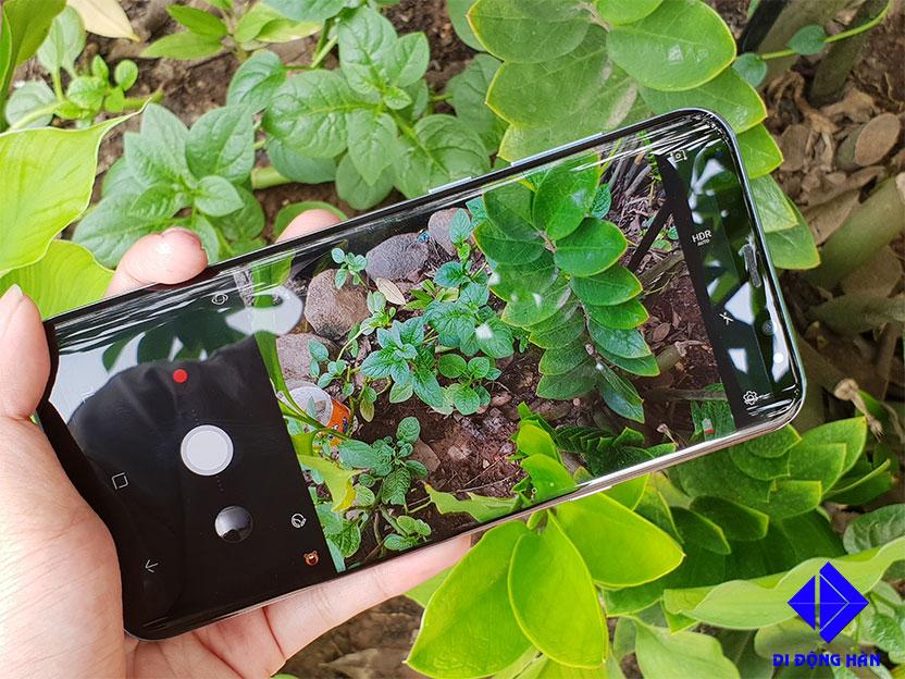 Samsung-Galaxy-S8-Plus-Han-Quoc7.jpg